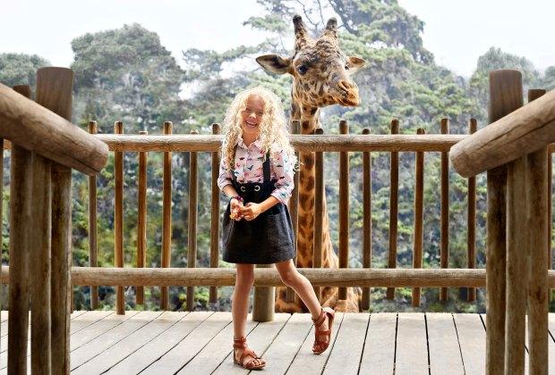 Face to face with the giraffes at the Santa Barbara Zoo. Photo courtesy of Visit Santa Barbara