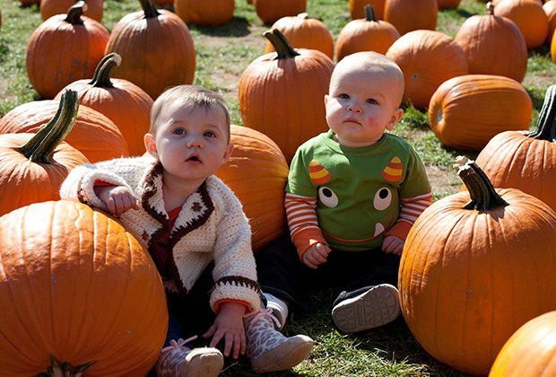 Top Pumpkin Patches And Farms For Long Island Kids