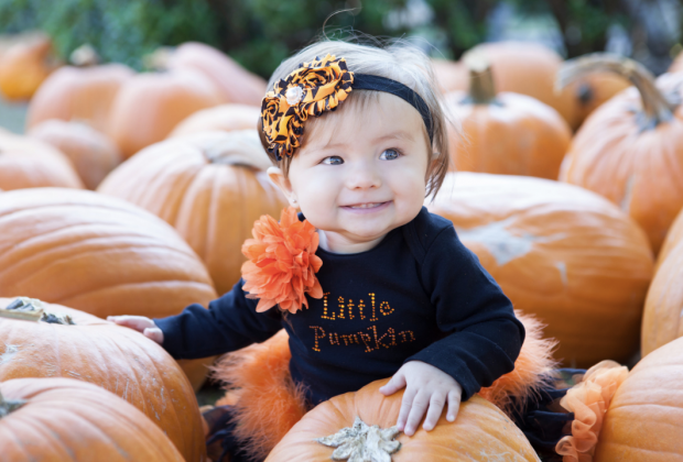 Sugar land pumpkin patch offers family-friendly fun while.