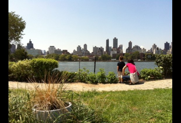 Socrates Sculpture Park is a waterfront oasis
