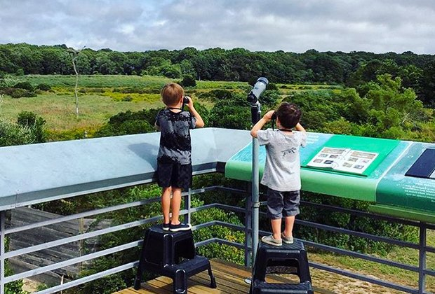 Two young birders look through binoculars at SoFo Natural History Museum and Nature Center