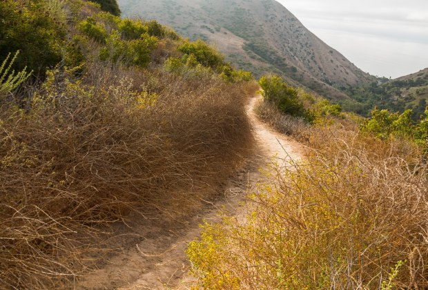 Things To Do With LA Kids Over Spring Break: Take a Hike in LA!