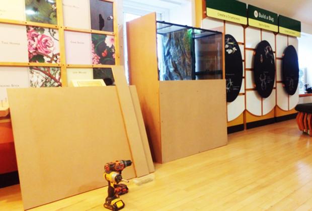 new animal homes at he Staten Island Children's Museum