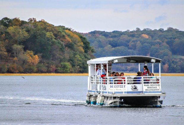 Discovery Wetlands Cruise in Stony Brook