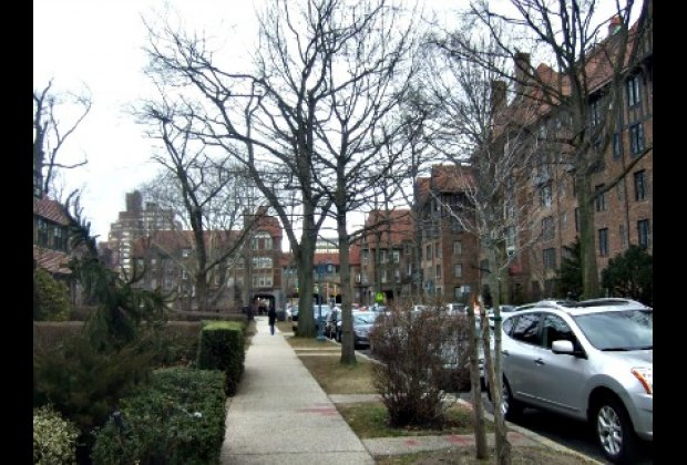 Suburban-style tree-lined street in Forest Hills Gardens