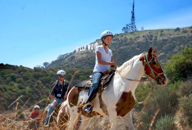 Photo courtesy of Sunset Ranch Hollywood