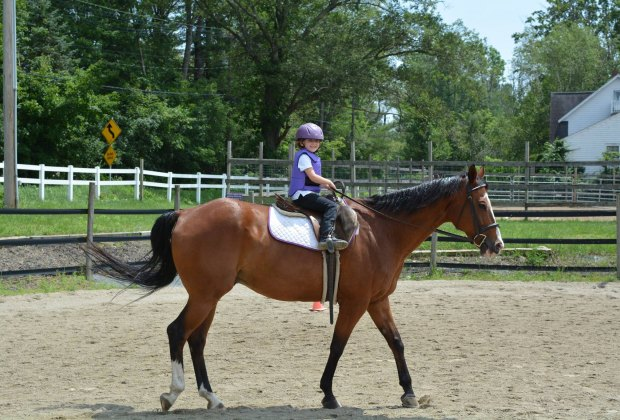 Got a Horse Lover? Here are 6 Spots for Riding Lessons