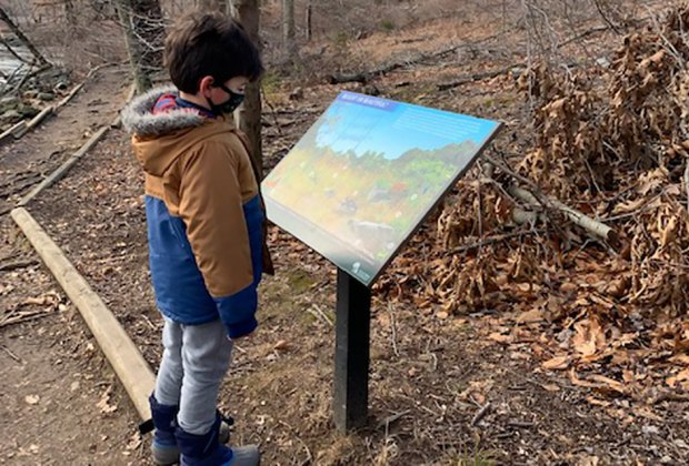 Explore the trails at Teatown Lake Reservation with kids