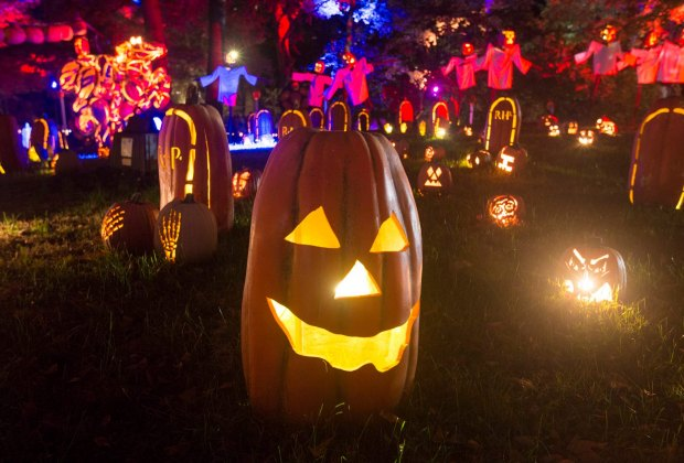jack-o-lanterns at night at the Blaze Long Island