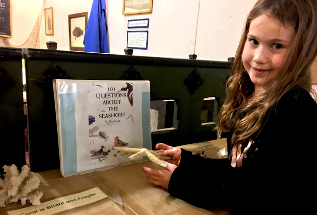 Learn about the sea in this hands-on exhibit.