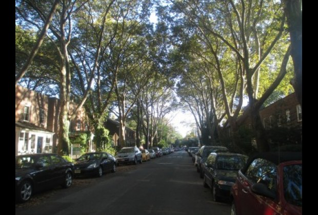 The pretty streets in Sunnyside Gardens are lined with trees and quaint houses