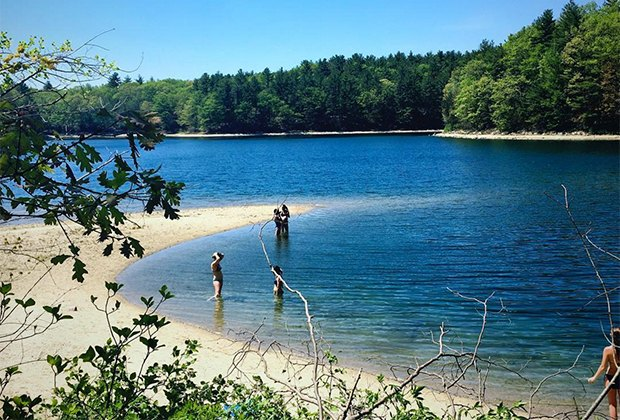 Things To Do In Westchester Today >> Everything You Need to Know About Visiting Walden Pond With Kids | Mommy Poppins - Things To Do ...