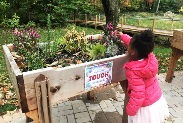 Kids are encouraged to get hands-on on the trail.