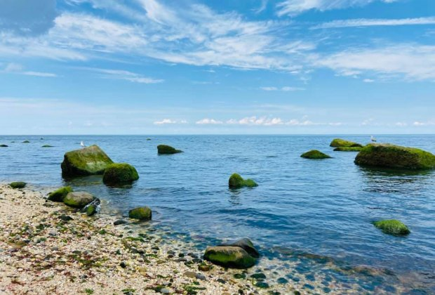A rocky shoreline greets visitors at Wildwood State Park