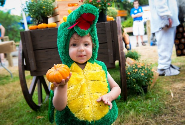 Picking out pumpkins during Zoo Boo/Photo courtesy of Stephanie Adams/Houston Zoo