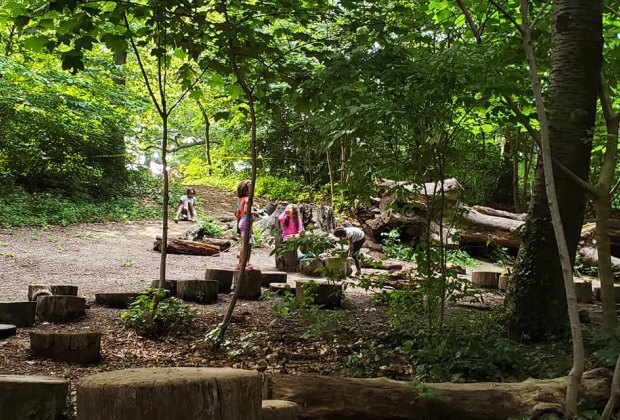 The Zucker Natural Exploration Area is in the shade