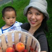Things to do with kids: 11 Spots for Peach Picking Near NYC