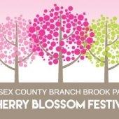 2015 Essex County Cherry Blossom Festival
