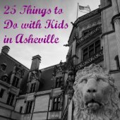 Things to do with kids: Asheville with Kids: 25 Best Things to Do for Families in Asheville, NC