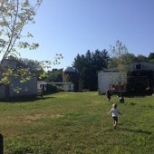 Things to do with kids: A Visit to Auerfarm in Bloomfield