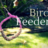 Things to do with kids: Toddler Nature Craft: Make Pipe Cleaner Bird Feeders