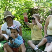 Birding Basics for Families