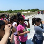 Things to do with kids: Bird Watching with Long Island Kids