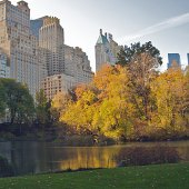Things to do with kids: 5 Great Places to See Fall Leaves in NYC