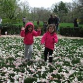 Things to do with kids: 25 Things We Can't Wait to Do with Kids This Spring in NJ