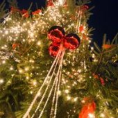 Things to do with kids: Tree Lighting Ceremonies and Holiday Parades in Montgomery County PA