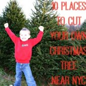 Things to do with kids: Cut-Your-Own Christmas Tree Farms Near NYC