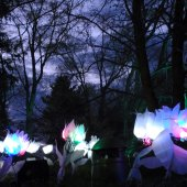 Things to do with kids: Lightscapes: Giant Illuminated Flowers, Fairies and Insects in Historic Hudson Valley