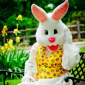 Things to do with kids: Take Photos with the Easter Bunny In or Near NYC