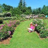 Things to do with kids: Free Things to Do This Summer with Kids in Hartford County, CT