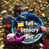 Things to do with kids: WeeWork Toddler Activity: Fall Sensory Bin