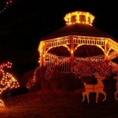 Things to do with kids: Weekend Fun for Boston Kids: Holiday Lights, Crafts & Museum Picks, November 21-22