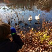 Things to do with kids: Long Island Kids' Activities November 15-16: Native American Day, Movies, Kids Yoga & More