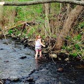 Things to do with kids: Parks, Farms & Nature Places to Visit in Granby, Connecticut