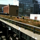 Things to do with kids: The High Line: How to Foil the Hipsters and Enjoy NYC's Hottest Park With Kids