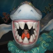 Things to do with kids: Adventure Awaits at the Adventure Aquarium in Camden, New Jersey