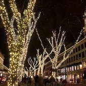 Things to do with kids: 10 Things to Do on Christmas Day in Boston with Kids