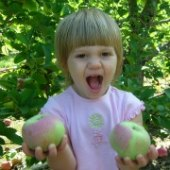 Things to do with kids: Apple Picking Farms in New Jersey and New York: Where to Pick Your Own Apples Near NYC