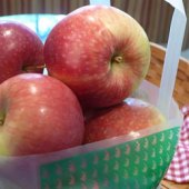 Things to do with kids: Apple Recipes for Kids and Families - Making the Most of Apple Picking Adventures