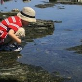 Things to do with kids: Great Day Trips from Boston: Mother's Day Weekend