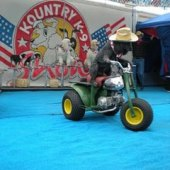 Things to do with kids: Best Summer State Fairs & Festivals for Kids in NJ