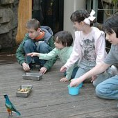 Things to do with kids: New Educational Programs for Fall 2010 at the Central Park Zoo