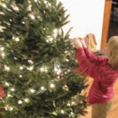 Things to do with kids: Having a Greener Christmas: Recycle your tree
