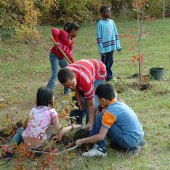 Things to do with kids: Earth Day Outdoor Volunteering Opportunities for Westchester Families