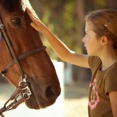 Things to do with kids: Great Summer Horse Riding Camps near LA