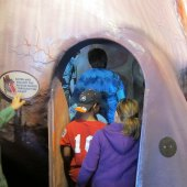 Things to do with kids: Science and Natural History Museum Day Trips
